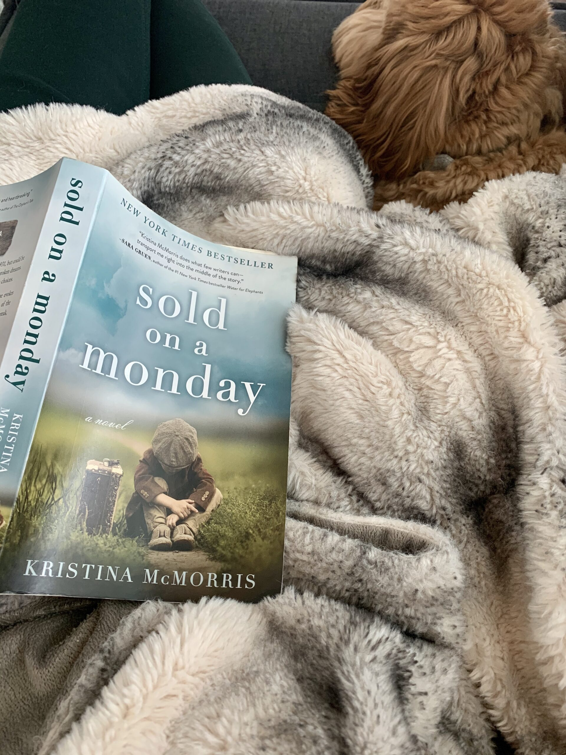 Sold on a Monday book review
